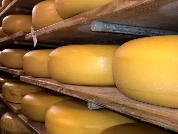 cheese-3081046_1280